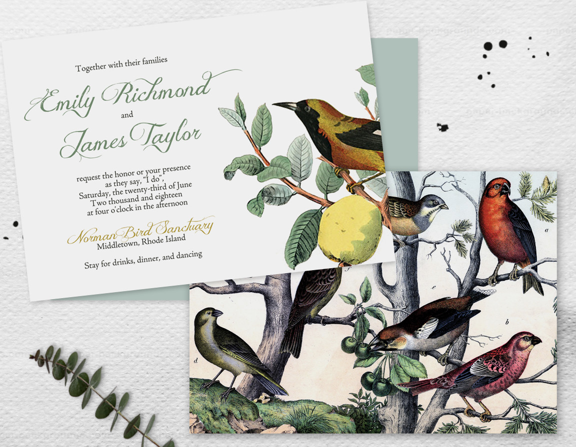 Ornithology Invitation