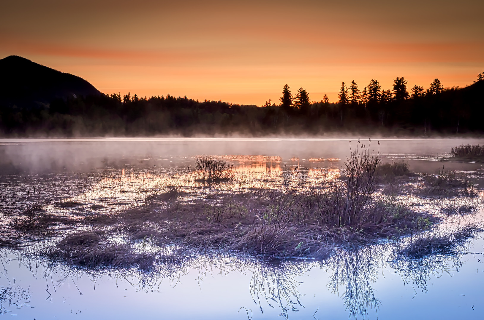 Connery Pond Morning