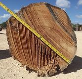 Wood Yard, Cook Wood, Logs, Wood Purchasing, Hickory