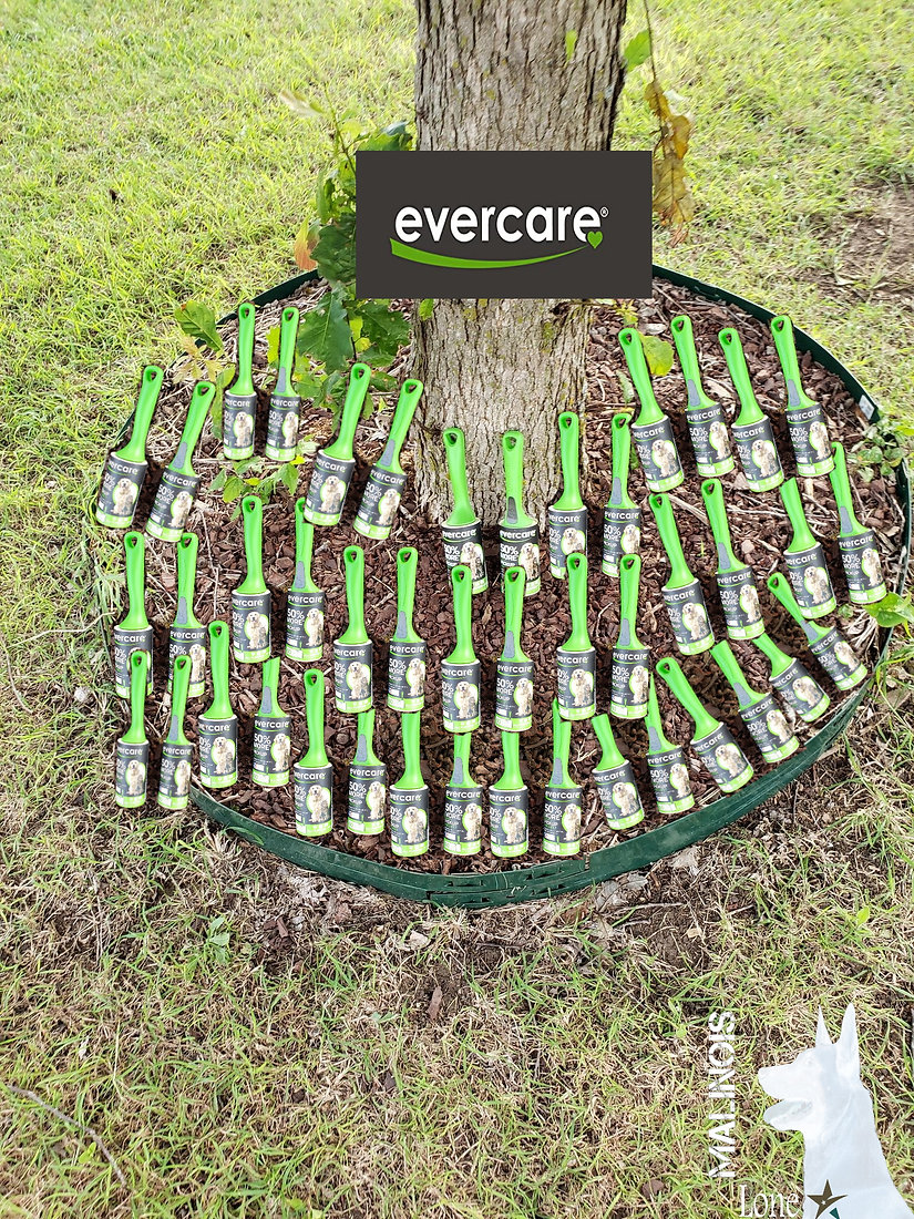 evercare1.jpg