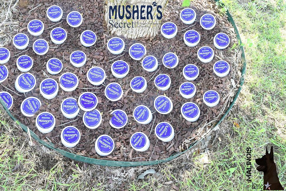 mushers3.jpg