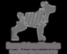 graydog_bdd8a447-54cb-44c1-9630-86690370