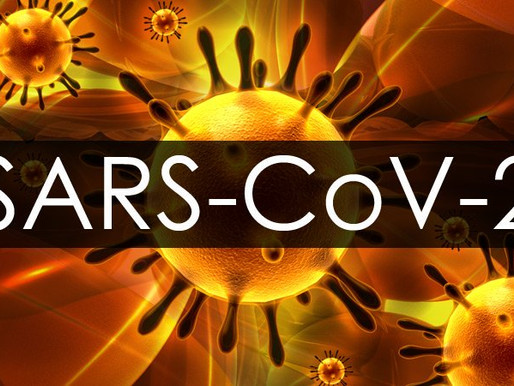 Sars-CoV2: Brasil na Contramão do mundo...!!!