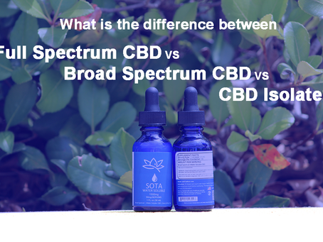 What is the Difference Between CBD Isolate, Broad Spectrum, and Full Spectrum?