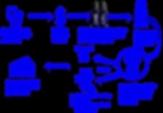 Distribution program image.png