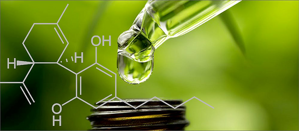 What is CBD Banner 2.png