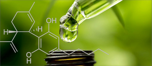 Full-spectrum CBD products that contain up to 0.3% THC may produce more pronounced effects. However, there is not enough THC to produce any psychoactive effects
