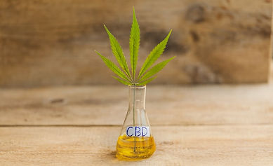 CBD oil Fractional Distillation