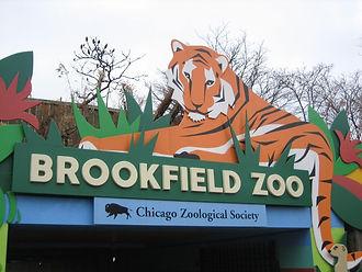 Brook field Zoo.jpg
