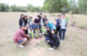 trip_08.jpg