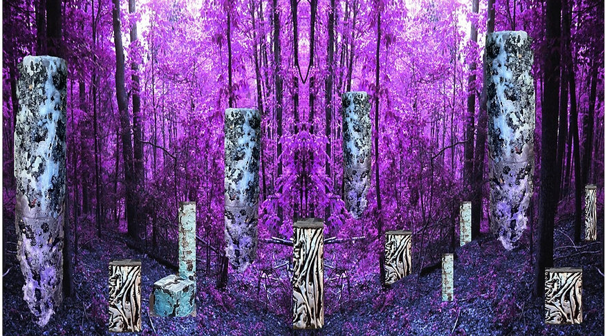 lavendar_edited_edited.jpg