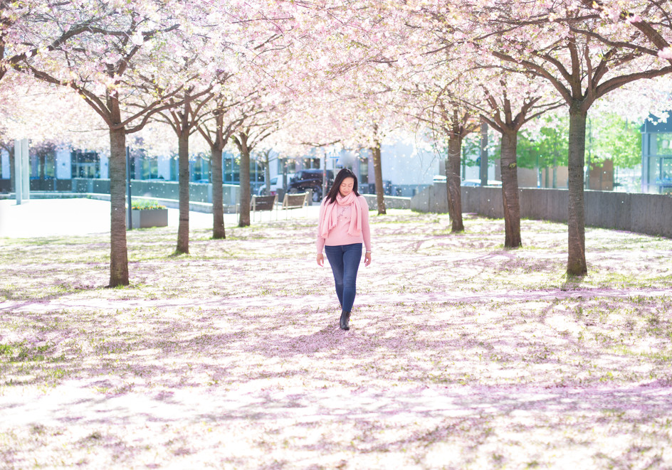 Ninna in Beautiful Cherry Blossoms