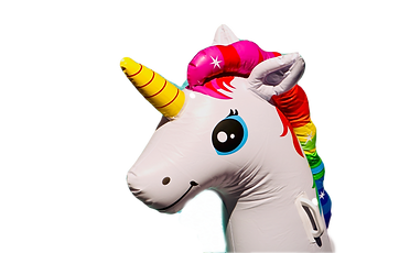 unicorn%20inflatable%20toy_edited.png