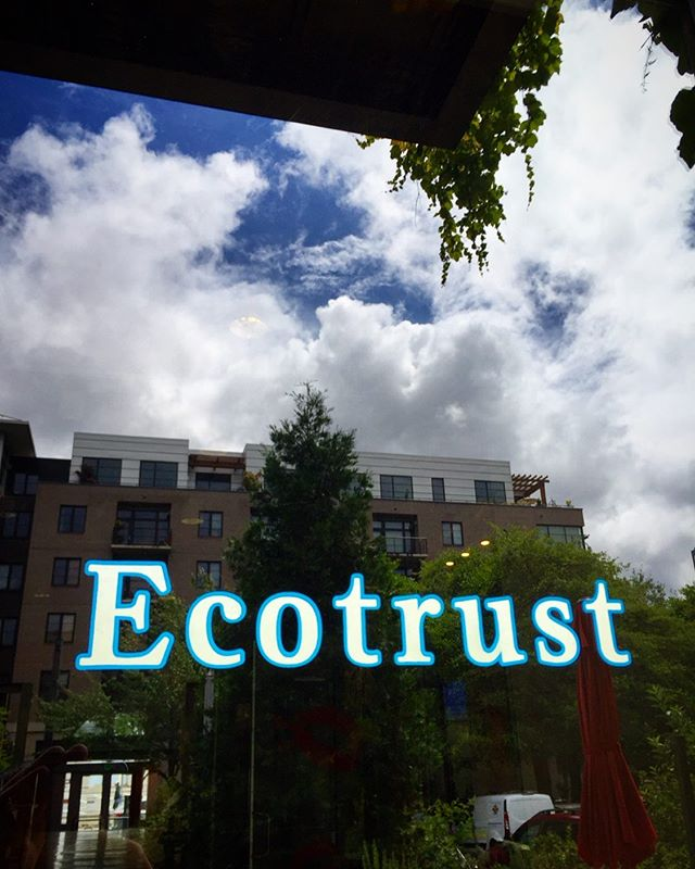 12K white gold leaf on glass door, Ecotrust