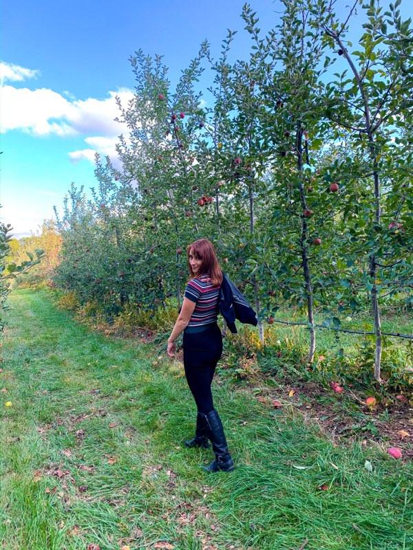 Walking in an apple orchard