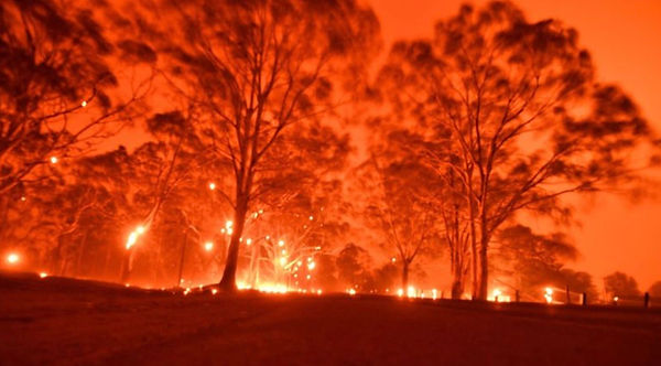 Bushfires1.jpg