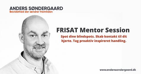 FRISAT mentor session.png