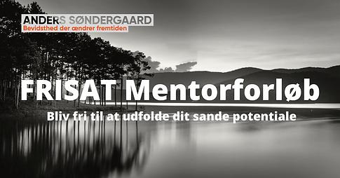 FRISAT Mentorforløb .png