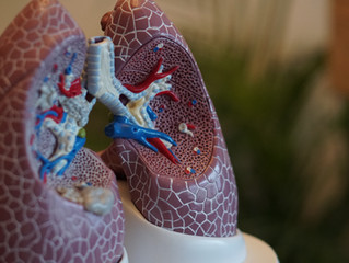 6 Ways to Keep Your Lungs Healthy