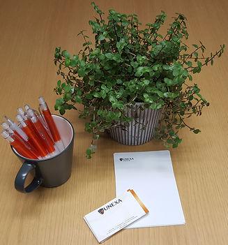 Grön, spretig krukväxt, Svart mugg med orangea pennor, två vita papper i olika storlekar med logga
