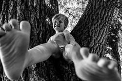 Klettern auf Bäume