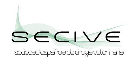 Logo SECIVE.jpg