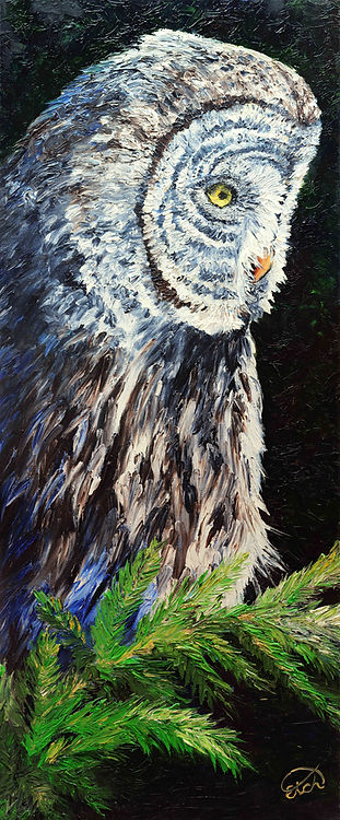 Great Grey Owl Painting Owl Art