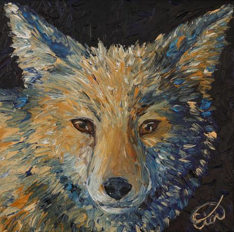 Three Dog Night- Coyote