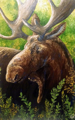 Moose Vibes-  SOLD
