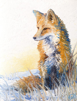 Morning Contemplations- SOLD