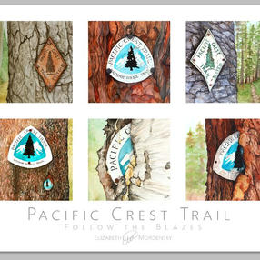 Check out my PCT Paintings here!