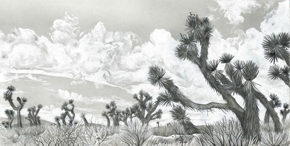 Desert Giants