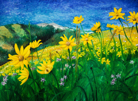 """""""A Time of Gold, Golden Aster"""""""