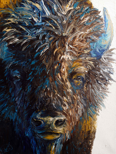 Portrait of a Bull Bison-SOLD