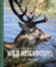 Wild Neighbours final front cover.jpg