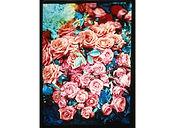David LaChapelle, Vibrant Garden, 1985