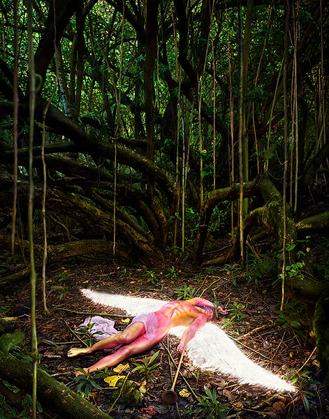 David LaChapelle, what was unseen