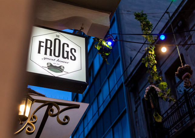 THE FROGS GUEST HOUSE