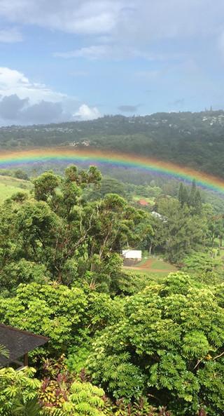 rainbow-7-19-17.jpg