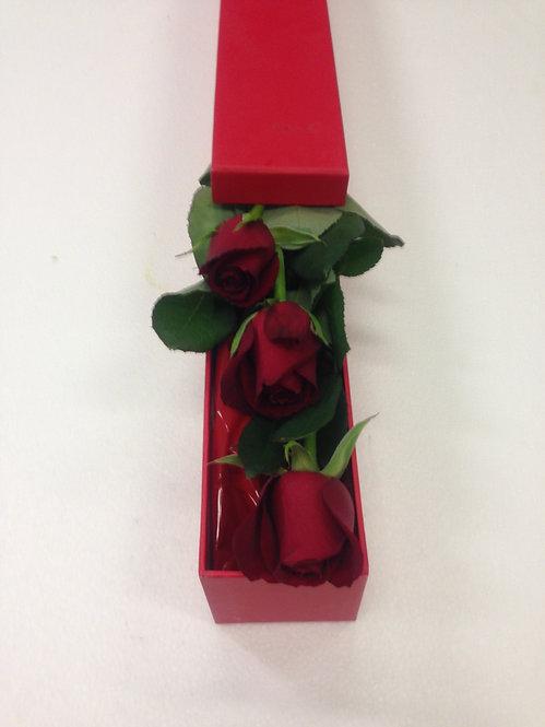 Rose Box #2