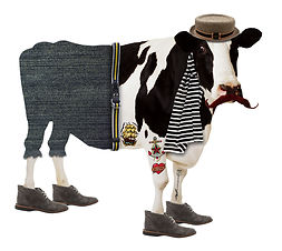 hipster cow no text.jpg