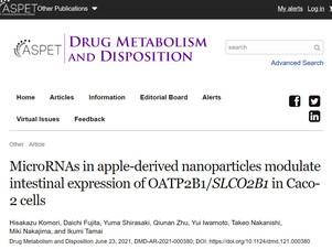 リンゴmiRNAがOATP2B1に作用する