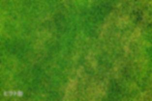 朝日ヴィント,阿見町,サッカー少年団,朝日ビント,本郷小学校サッカー,実穀小学校サッカー,阿見町実穀小学校,阿見町サッカー少年団