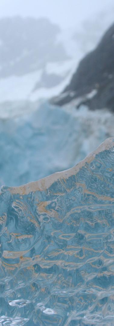 Ice Sculpture