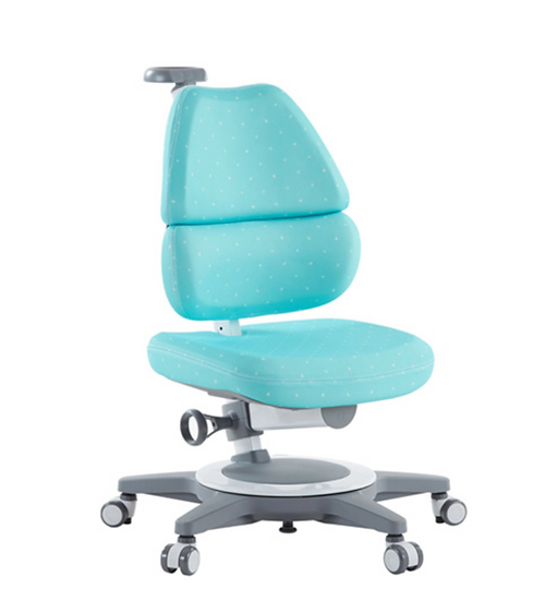 TCT-Ego Chair With Footrest