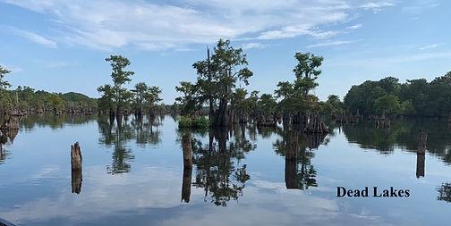 Dead Lakes.jpeg