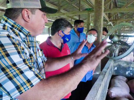 Potencial Econômico- Prefeito Sérgio Lopes visita Granja de Suínos em Epitaciolândia