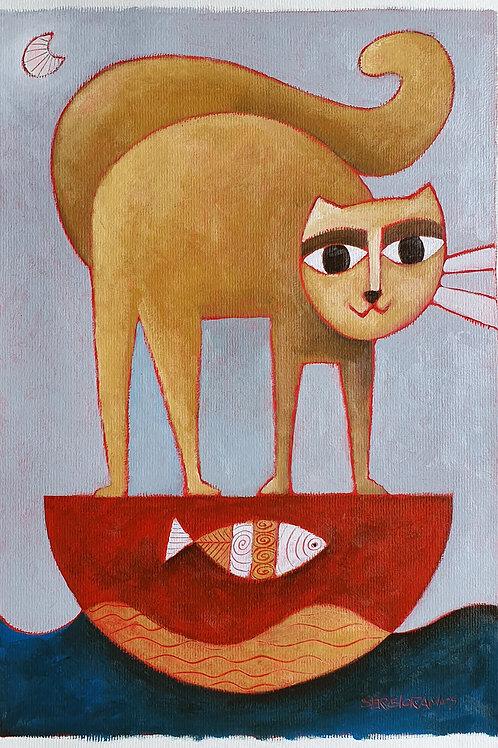 o gato navegante 42x30