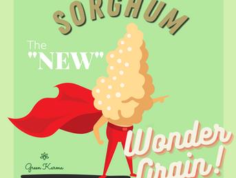 Sorghum is the New Quinoa
