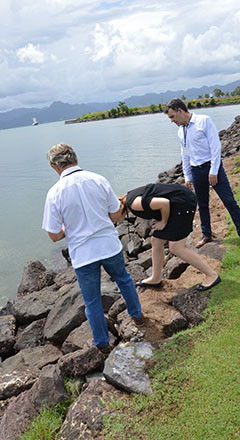 Resized Delegate practical exercise 4.jp